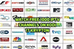PVR IPTV Simple client Kodi krypton